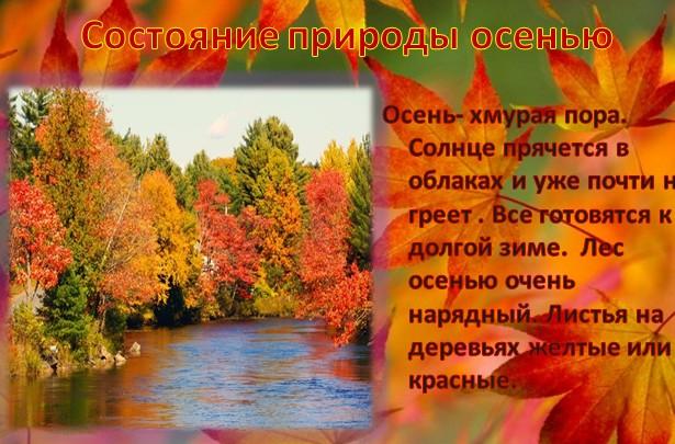 Презентация Для Дошкольников О Сердце